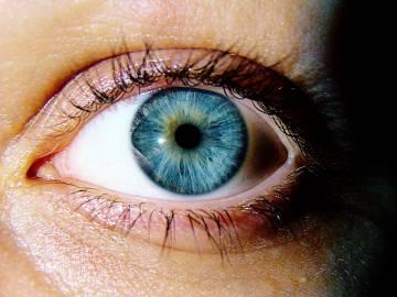 1. helyezett: Termeczky Kata - Őrizem a szemed